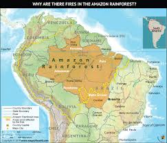 Tropical rainforests are an important ecosystem with distinct characteristics and adaptations. Why Are There Fires In The Amazon Rainforest Answers