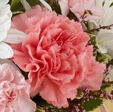 sorority flowers for sororities