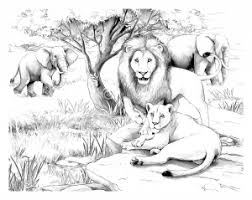 Small Picture Mandala lion Coloring pages for adults JustColor