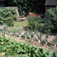 Kitchen Gardens Plant Types Kitchen Garden