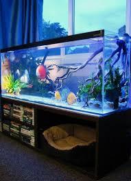 Indoor Aquarium Design 21 Stunning Indoor Aquarium Design Ideas For Inspiring Home