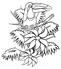 Small Picture Toucan In The Jungle coloring page Free Printable Coloring Pages