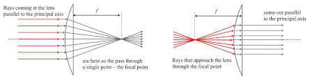 this pattern can be reversed a bundle of diverging rays going to the lens from a focal point are bent by the lens so they all come out parallel
