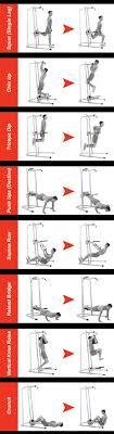 Bowflex Bodytower Best Sale Exercise Fitness