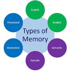 Types Of Memory Chart Types Of Memory