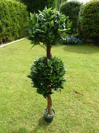 artificial plant 4 artificial double bay tree in a pot 1 2m indoor or outdoor