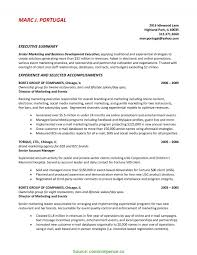 Top Executive Summary Resume Example Template Resume Overview