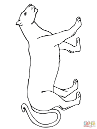 Small Picture Walking Mountain Lion coloring page Free Printable Coloring Pages