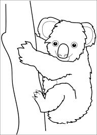 Kleurplaat Koala Beertje Schattige Dieren