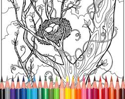 Small Picture Coloring Pages for Adults trees tree by WhimsicalPublishing