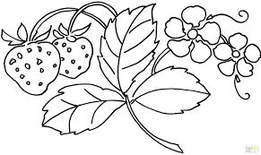 Descendants Colouring Pages Evie Descendants Coloring Pages