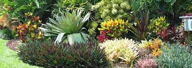 Small Picture Garden Design Garden Design with Planting Garden and Landscape