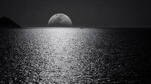 White Black Moon Evening Night Time ...