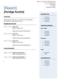 Standaard Curriculum Vitae Download Voorbeeld Cv