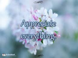 Quotes About Appreciating Life Stunning 48 Quotes About Appreciation Spirituality BabaMail