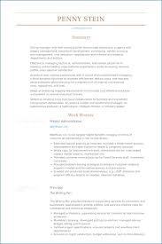 It Administrator Resume Sample Kantosanpo Com