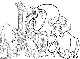 Zoo Animal Coloring Pages Animals Page Free