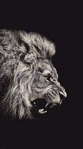 Lion-Wallpaper-Iphone-7.jpg 1,242×2,208 ...