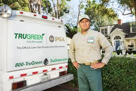 comment from chelsea b of trugreen lawn care business owner