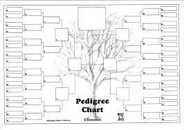 Family Tree Chart Freeware Free Six Generation Pedigree Chart Generation Family