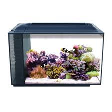 Fish Tank Fish Tanks Saltwater Freshwater Aquariums Supplies Petco