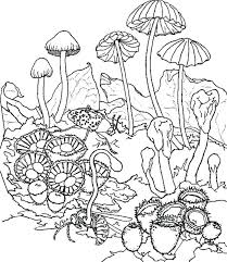mushroom coloring pages mushroom coloring pages awesome coloring pages for kids print and color the of