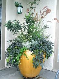 pot planting ideas inspiring large outdoor pot plant pics large container  planting patio contemporary with concrete
