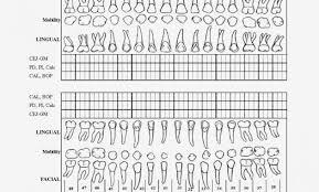 Printable Perio Chart Form Bedowntowndaytona Com