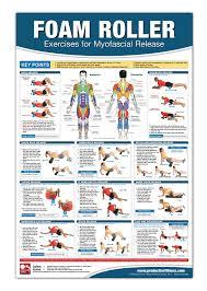 Foam Roller Myofascial Release Chart Poster Muscle