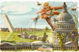 Image result for drain dc swamp