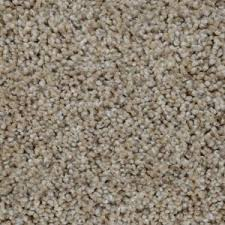 home decorators collection carpet sample trendy threads i
