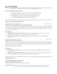 Resume For Counselor Counselor Resume Badak For Hirnsturm Me