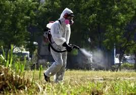 Αποτέλεσμα εικόνας για προστασια απο κουνουπια