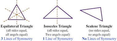 Lines Of Symmetry Lesson Turtle Diary
