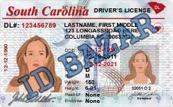 Psd Driver Template License Carolina South