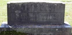 Iva Clark Charles (1857-1927) - Find A Grave Memorial