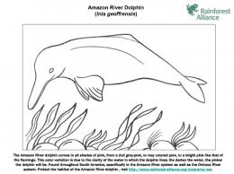 Amazon River Dolphin Coloring Page Rainforest Alliance