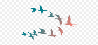 colorful birds flying clipart. Interesting Flying Flying Crows Png Birds  Colorful Clipart To R