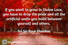 Divine Love Quotes divine love quotes 100 if you want to grow in divine love have drop 47