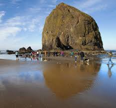 Tide Chart For Cannon Beach Oregon Look But Dont Touch Haystack Rock In Cannon Beach The