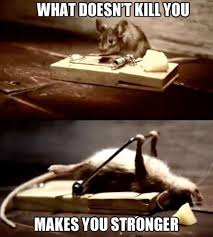 Funny Quotes About Staying Strong. QuotesGram via Relatably.com