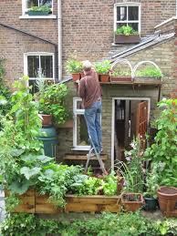 Small Picture Vertical Veg An absolutely awesome container gardener in the UK