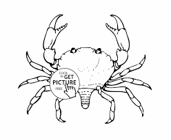 Small Picture Free Crab Coloring Page Printable Crab Coloring Pages For Kids U