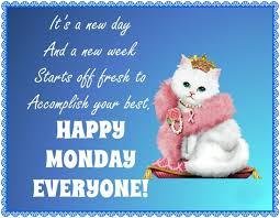 Monday Quotes Funny Enchanting Happy Monday Wishes Funny Messages Monday Quotes WishesMsg