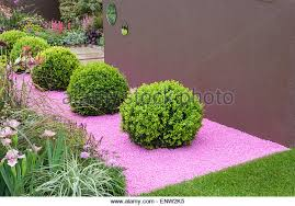 Small Picture Topiary Box Balls Stock Photos Topiary Box Balls Stock Images