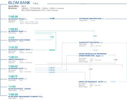 Organizational Chart Blom France