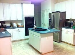 french door refrigerator in kitchen. Refrigerators With Cabinet Doors Kitchen Fridge Behind Door . French Refrigerator In