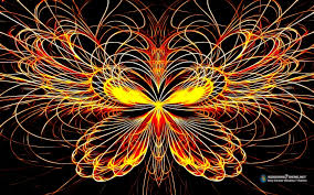 butterfly effect colors High Quality ...