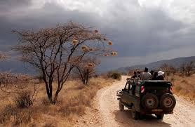 How to Stay Safe on Safari in Kenya: 6 Tips