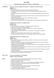 Marketing Project Coordinator Resume Samples Velvet Jobs